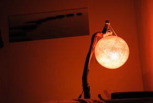 Globe orange en suspension sur un pied de vigne