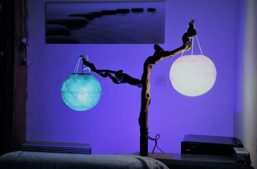 Globes bleu et violet en suspension sur un pied de vigne