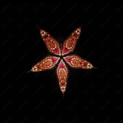 Etoile lumineuse Black Star